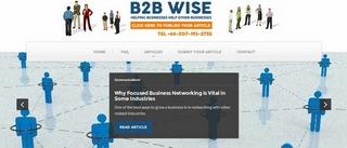 b2bwise.com